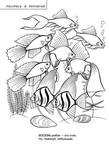 раскраски морские рыбы