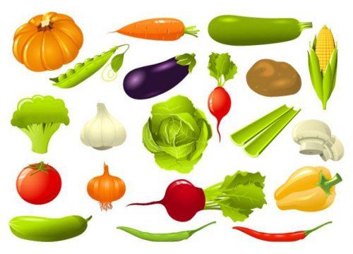 красивые овощи картинки