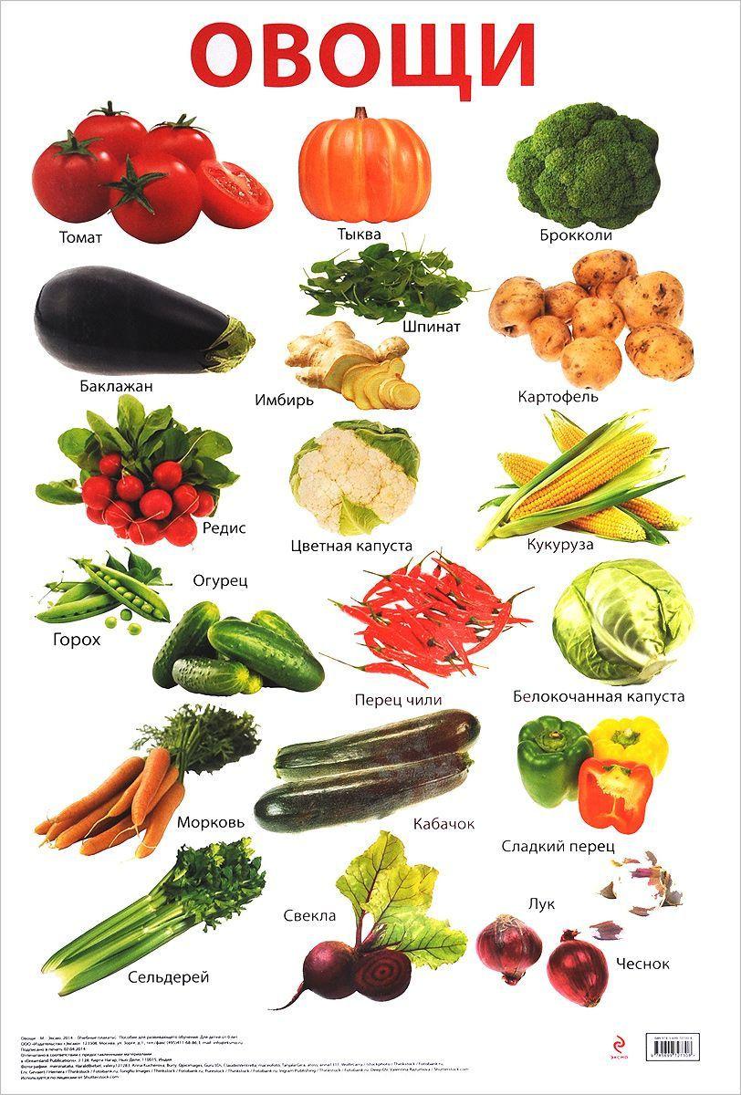 Овощи фрукты ягоды для детей