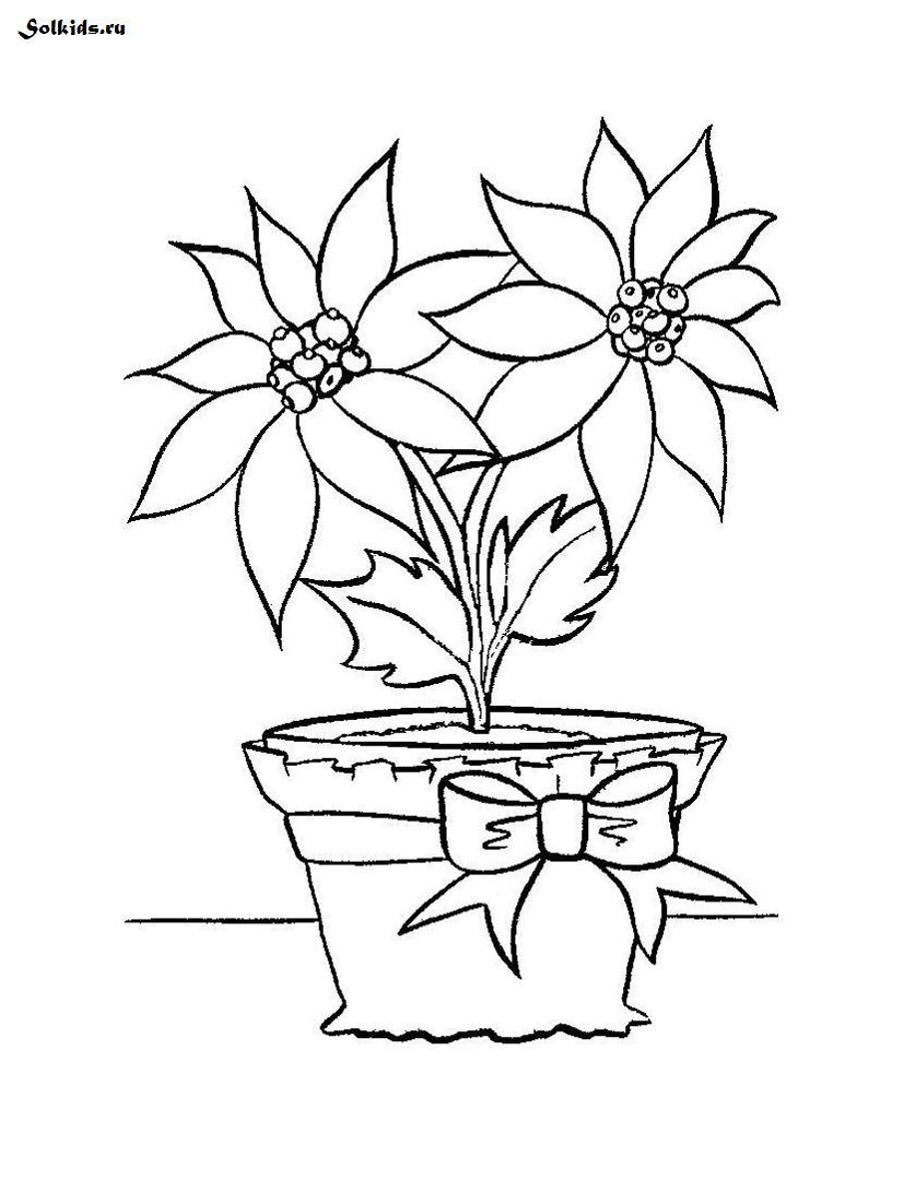 Цветы картинки раскраски для детей - 9