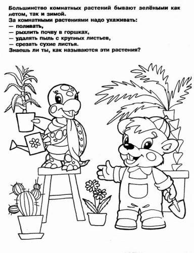 раскраски комнатные растения для детей