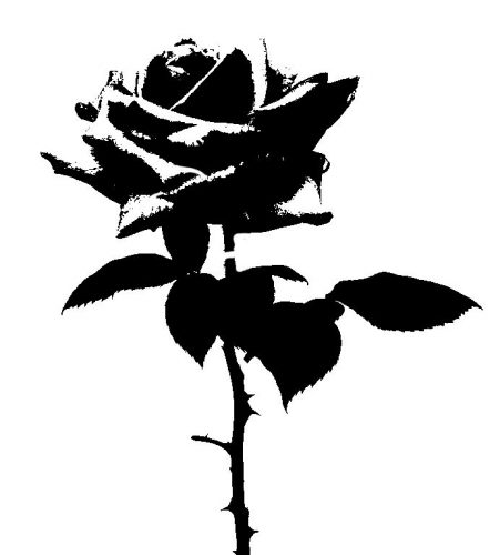трафарет цветок