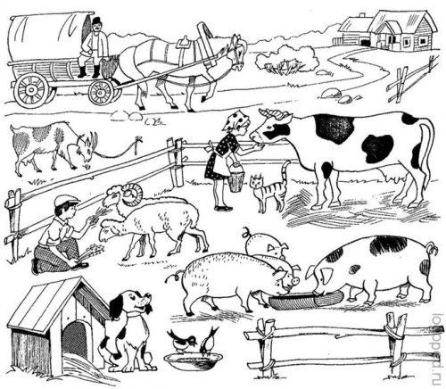 Презентация Для Малышей Домашние Животные