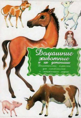Домашние животные карточки