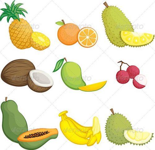 картинки экзотических фруктов