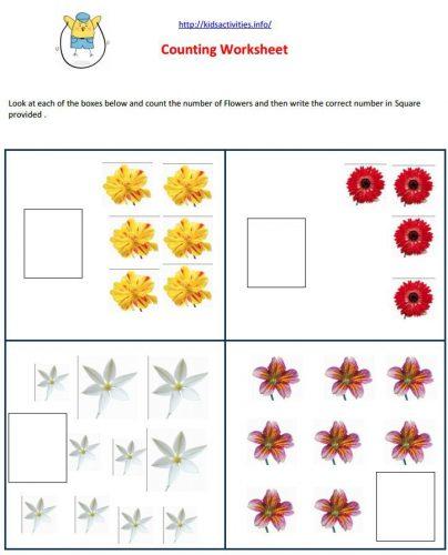 цветы на английском16