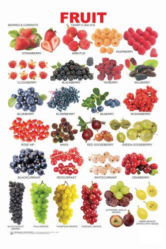 знакомство с фруктами на английском