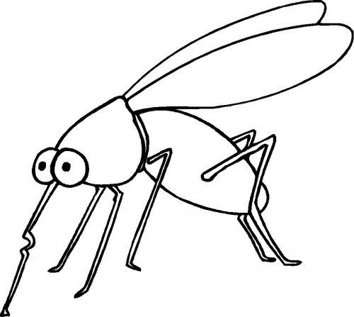 раскраска комар