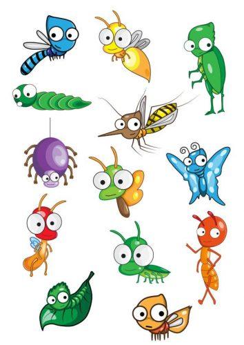 насекомые в доме виды