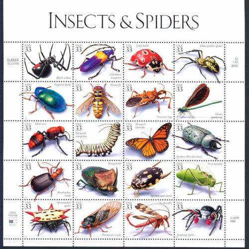 виды насекомых фото