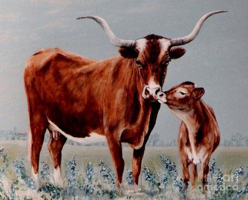 картинки корова с теленком2