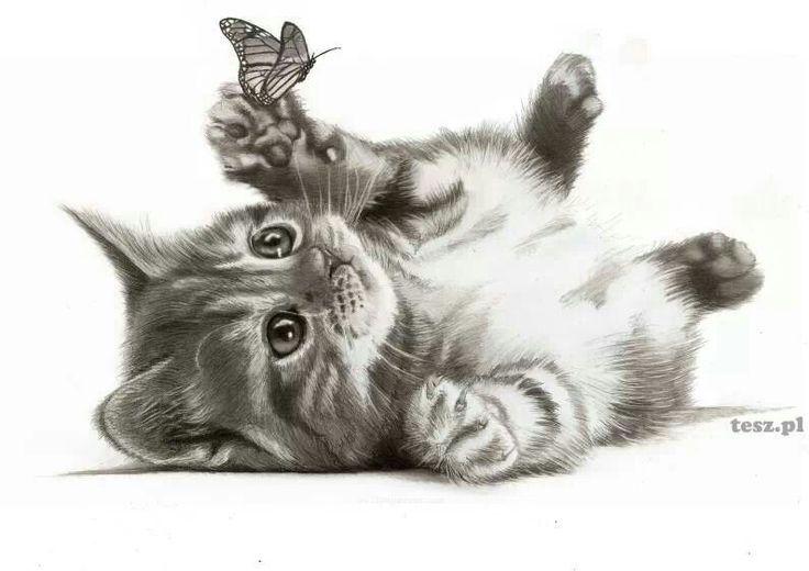 его картинки для декупажа котики черно белые сложностей такой