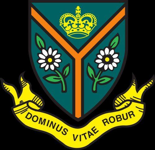 герб школы картинки5