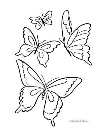 бабочка раскраска для детей17