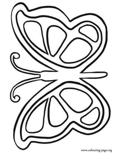 бабочка раскраска для детей8