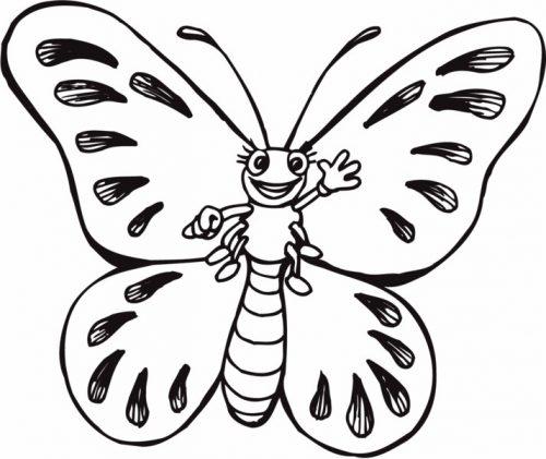 раскраска бабочка4