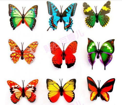 бабочки картинки для детей8