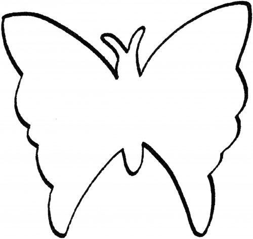 раскраска бабочка7