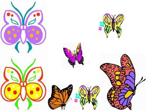 бабочки картинки для детей5