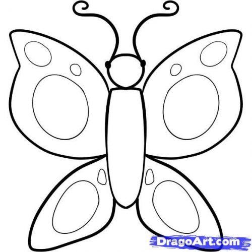 раскраска бабочка3