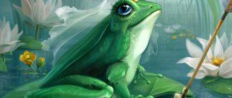 картинка для детей лягушка