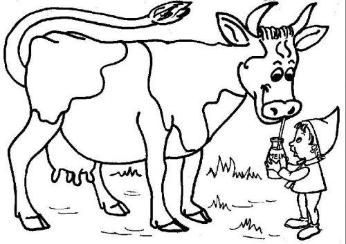 корова раскраска6
