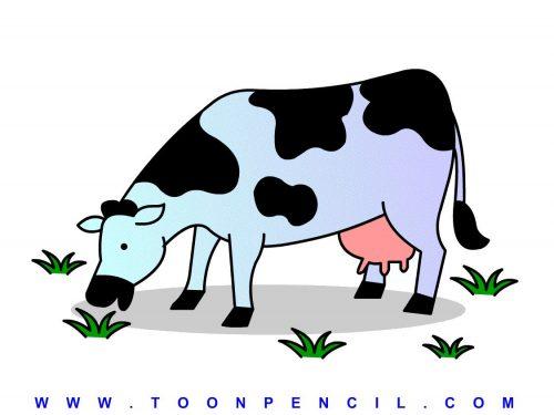 корова картинки для детей3