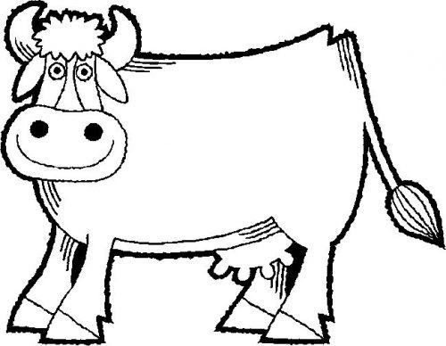 корова раскраска4