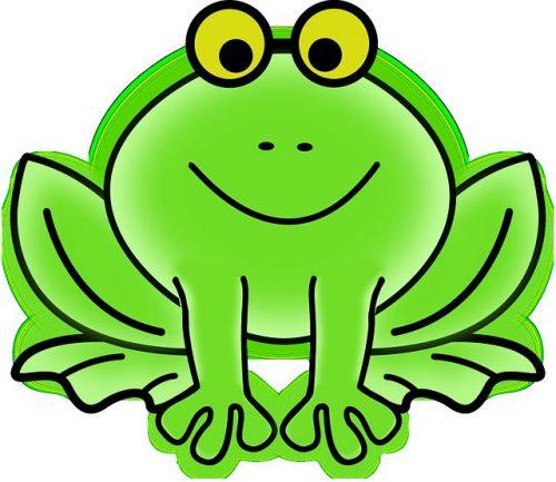 лягушка картинка6
