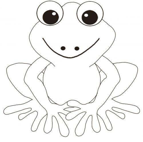 картинка лягушка раскраска для детей22