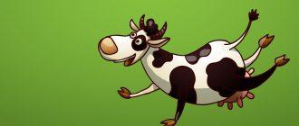 картинки смешные коровы3