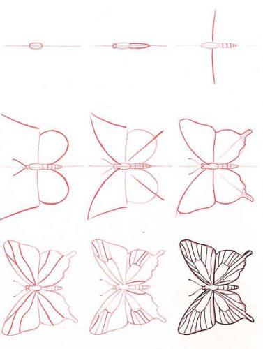 как нарисовать бабочку2