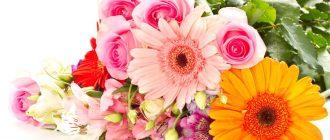 цветы ко дню матери