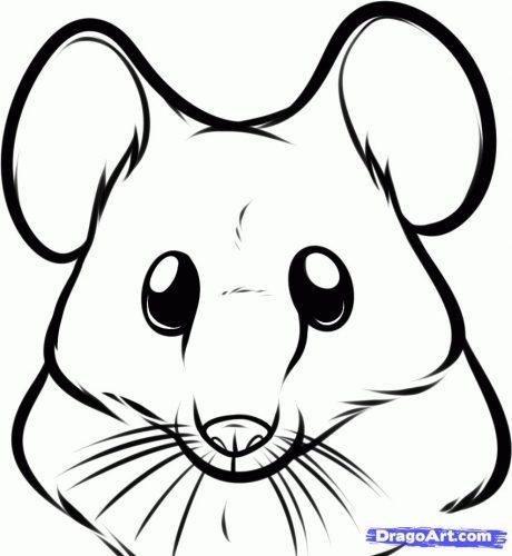 мышка раскраска10