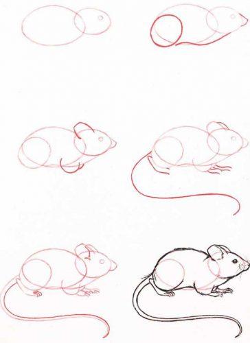 мышка по шагам карандашом2