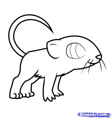 мышка раскраска11