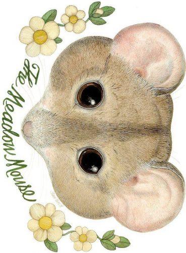 маска мышки4