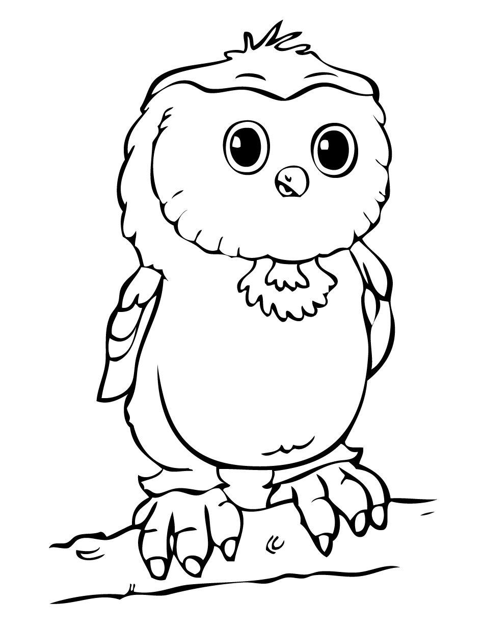 Картинка сова раскраска