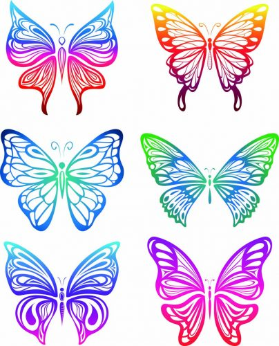 картинки бабочек для вырезания5