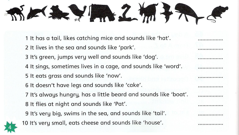 описание легких на английском языке