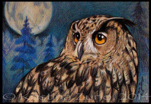 нарисованные совы картинки