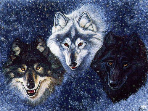 картинки волков фэнтези3