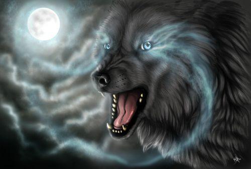 серый волк картинка