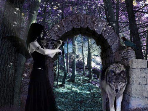 волк картинки для детей1