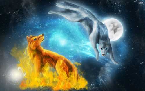 волк картинка4