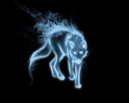 волк картинка6