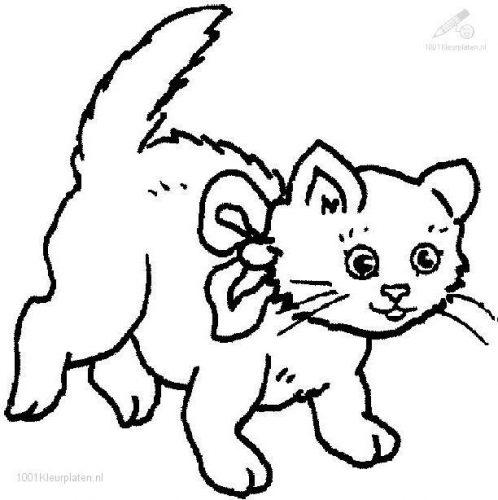 кошка раскраска5
