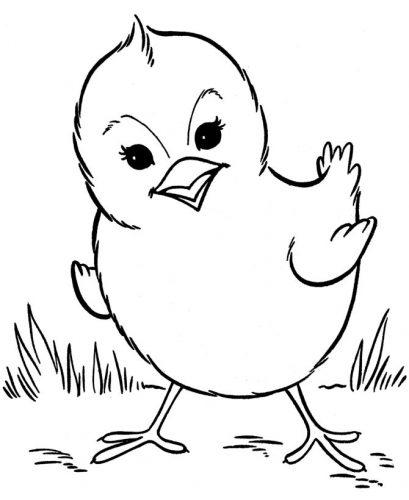 обрывная аппликация цыпленок