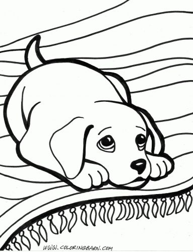 собака раскраска10