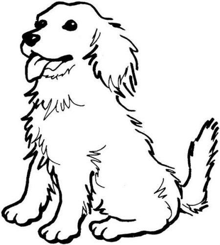обрывная аппликация собака